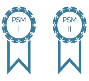 PSM I en PSM II